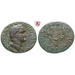 Römische Provinzialprägungen, Phrygien, Apameia, Vespasianus, Bronze, ss