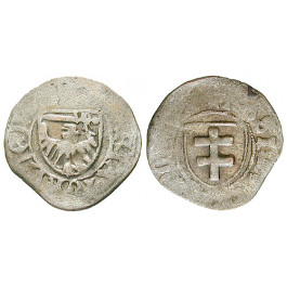 Thorn, Stadt in Polen, Kasimir IV. Andreas der Jagiellone, Schilling o.J., ss