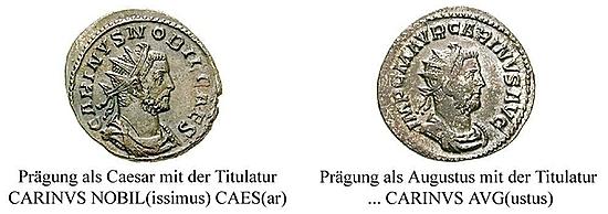 Carinus
